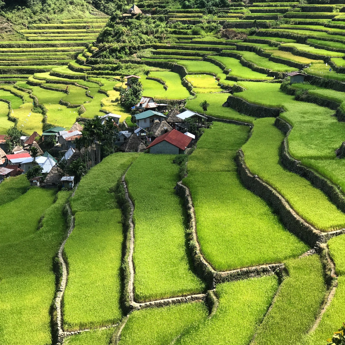 Ifugao Rice Terraces, Philippines